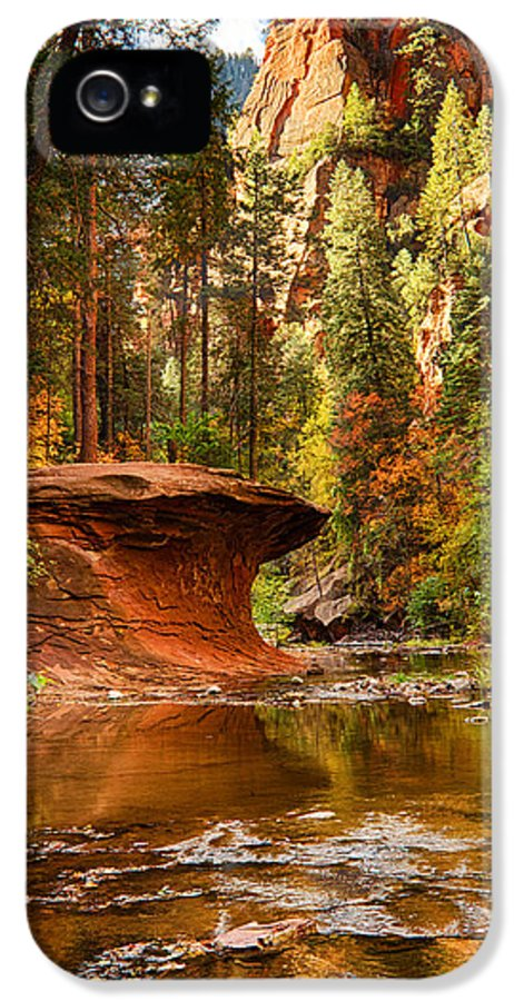 Fall IPhone 5 Case featuring the photograph Out On A Ledge by Saija Lehtonen