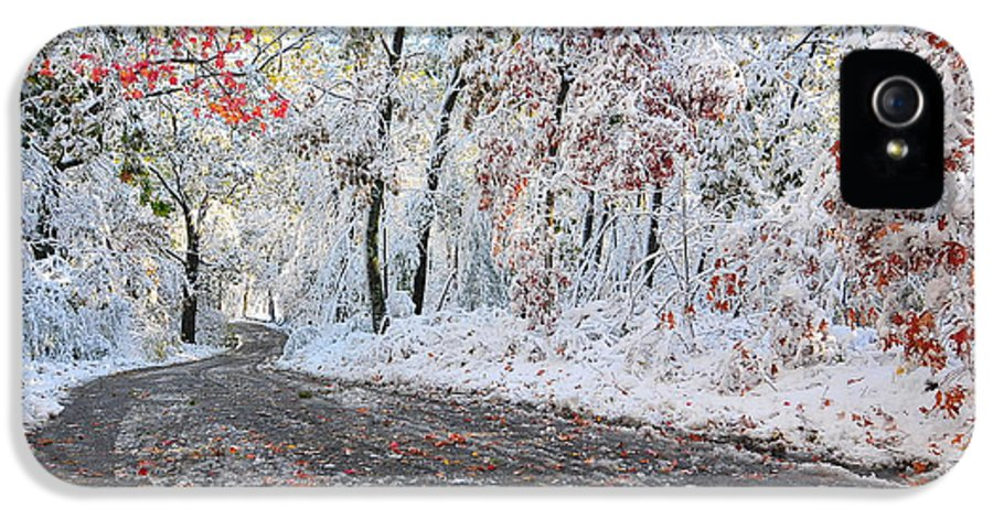 Snow IPhone 5 Case featuring the photograph Painted Snow by Catherine Reusch Daley