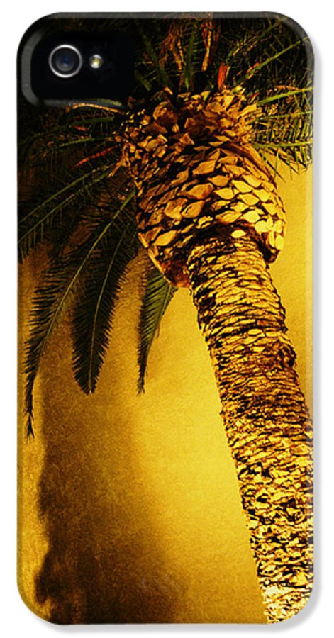Flora IPhone 5 Case featuring the photograph Palm Tree In Vegas. by Yo Pedro