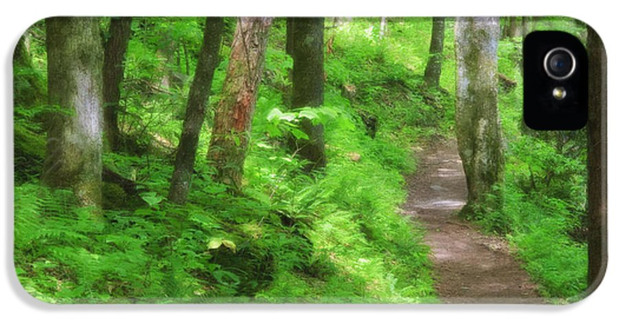 Joyce Kilmer Forest IPhone 5 Case featuring the digital art Path In The Forest by Jill Lang