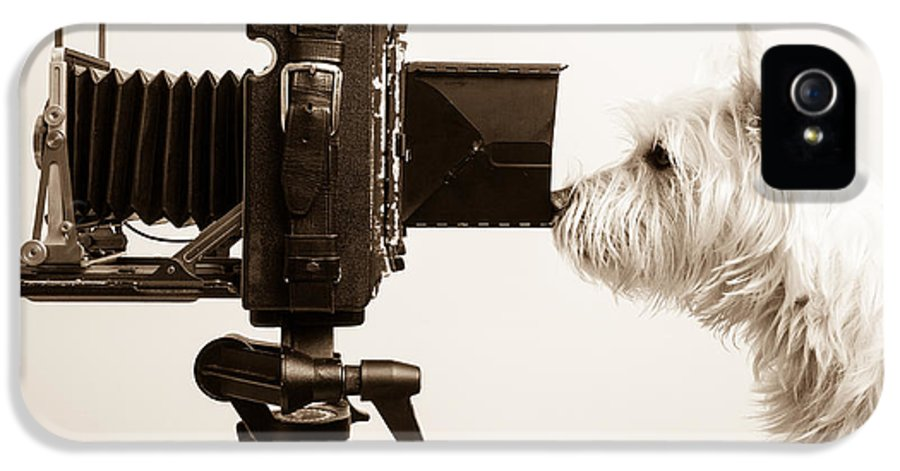 View IPhone 5 Case featuring the photograph Pho Dog Grapher by Edward Fielding