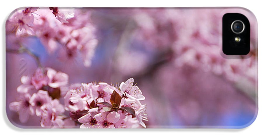 Cherry IPhone 5 Case featuring the photograph Pink by Guido Montanes Castillo