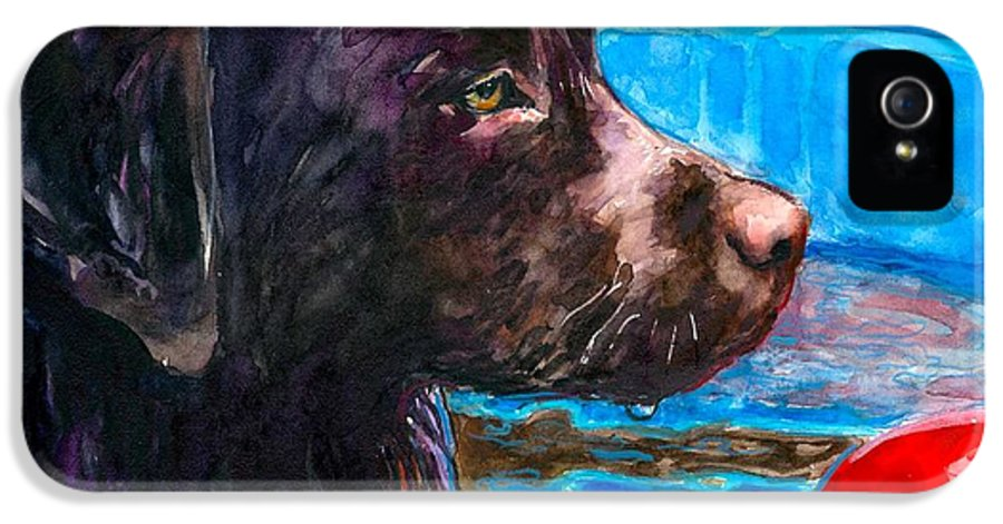 Chocolate Lab IPhone 5 Case featuring the painting Pool Party Of One by Molly Poole