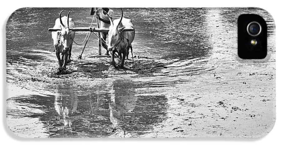 Rural IPhone 5 Case featuring the photograph Preparing A Rice Paddy by Tim Gainey
