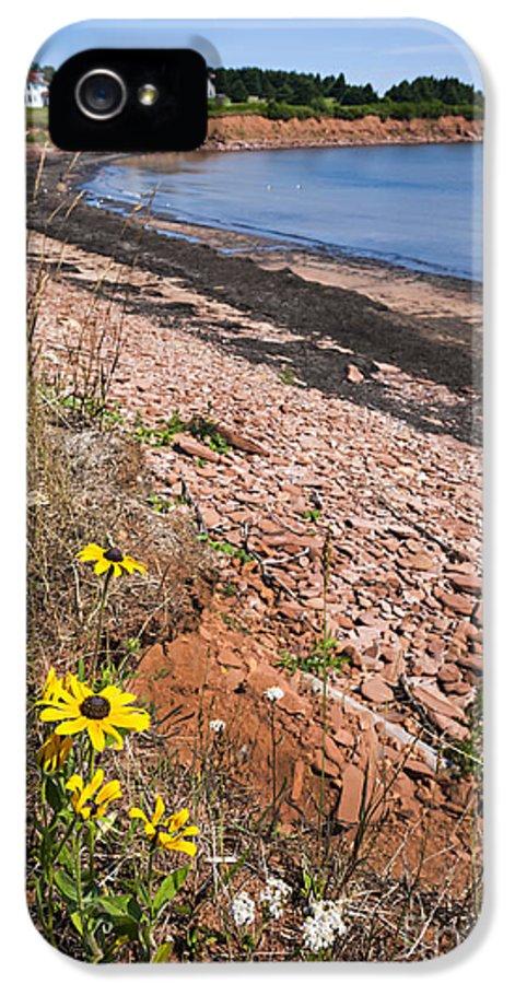 Prince Edward Island IPhone 5 Case featuring the photograph Prince Edward Island Coastline by Elena Elisseeva