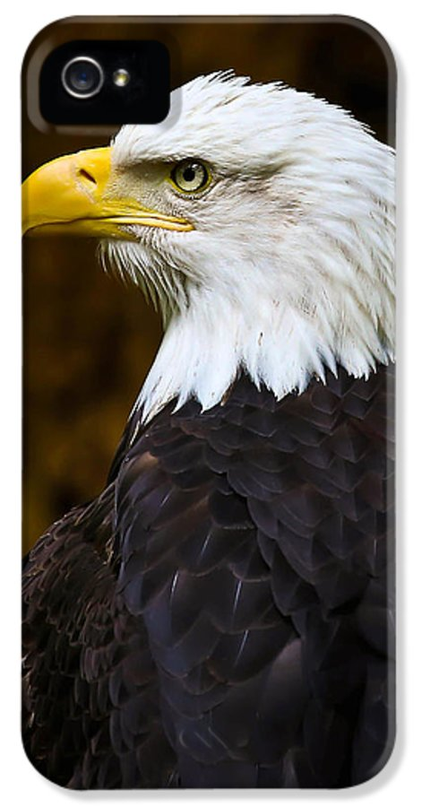 Eagle IPhone 5 Case featuring the photograph Proud Eagle Profile by Athena Mckinzie