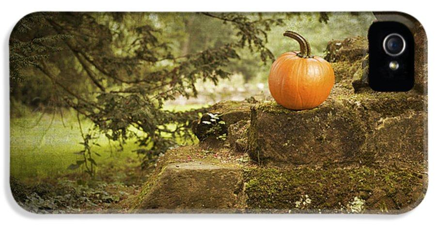 Pumpkin IPhone 5 / 5s Case featuring the photograph Pumpkin by Amanda Elwell