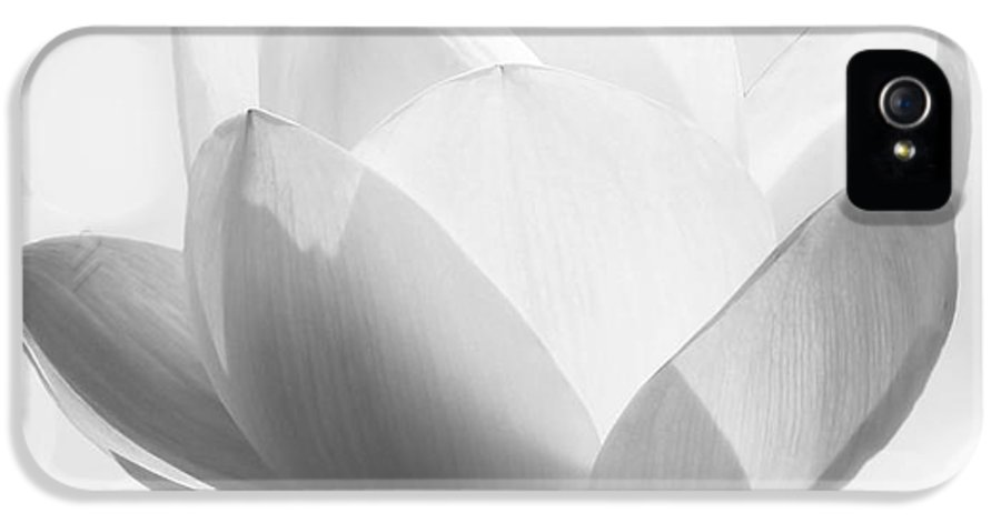 B&w IPhone 5 Case featuring the photograph Pure by Jacky Gerritsen