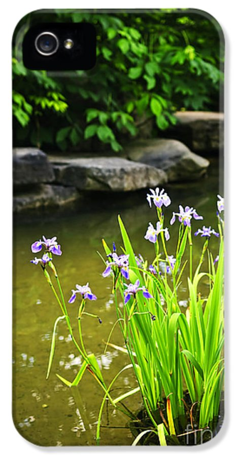 Garden IPhone 5 Case featuring the photograph Purple Irises In Pond by Elena Elisseeva