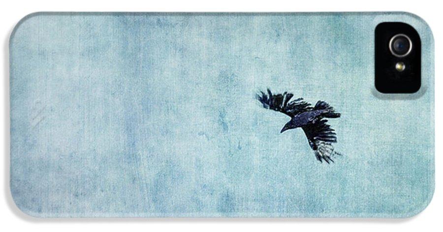Minimalistic IPhone 5 Case featuring the photograph Ravens Flight by Priska Wettstein
