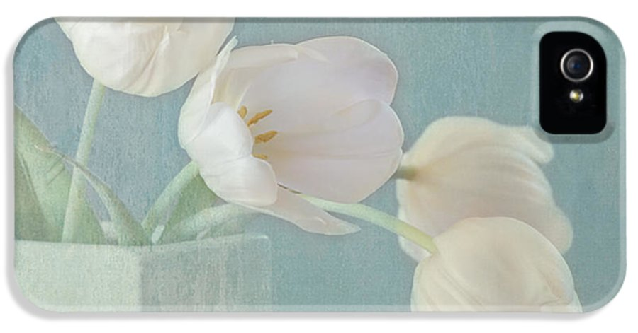 White Flower IPhone 5 Case featuring the photograph Ray Of Beauty by Kim Hojnacki