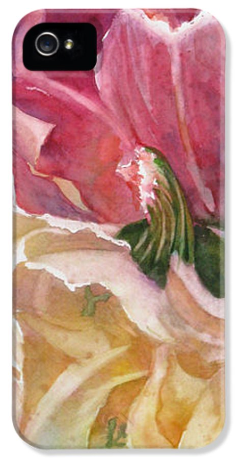 Abstract IPhone 5 Case featuring the painting Red-amber-green by Mohamed Hirji