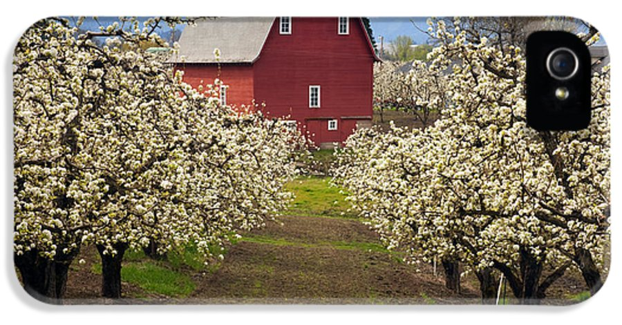Barn IPhone 5 / 5s Case featuring the photograph Red Barn Spring by Mike Dawson