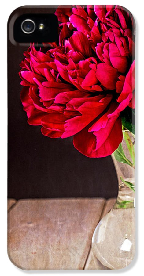Vase IPhone 5 Case featuring the photograph Red Peony Flower Vase by Edward Fielding