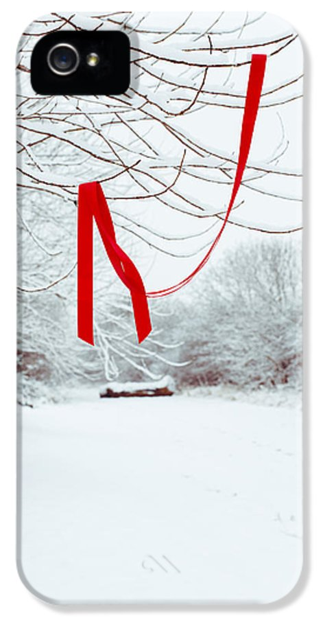 Red IPhone 5 Case featuring the photograph Red Ribbon In Tree by Amanda Elwell