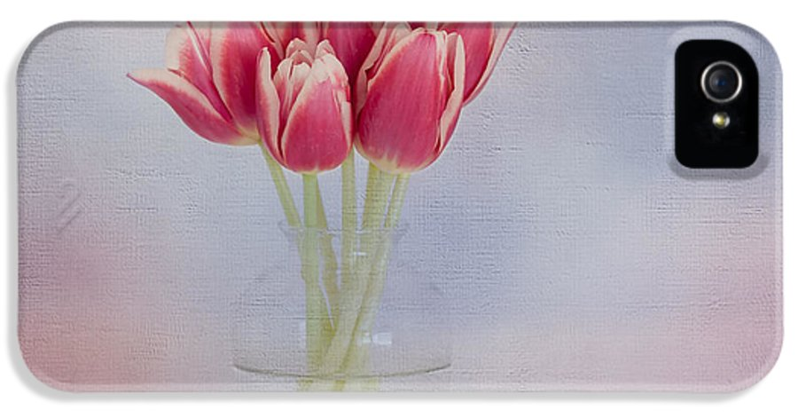Red Flower IPhone 5 Case featuring the photograph Red Tulip Still Life by Kim Hojnacki