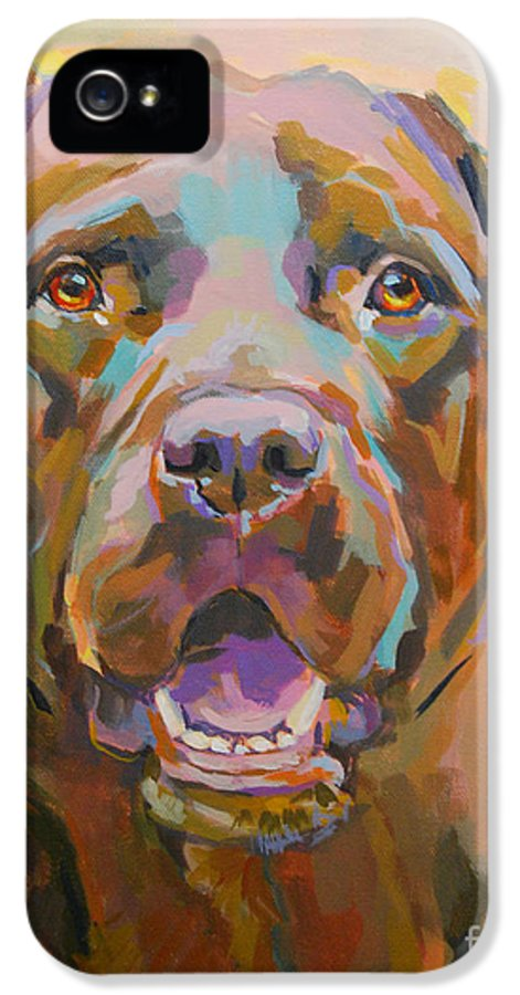 Chocolate Lab IPhone 5 Case featuring the painting Reilly by Kimberly Santini