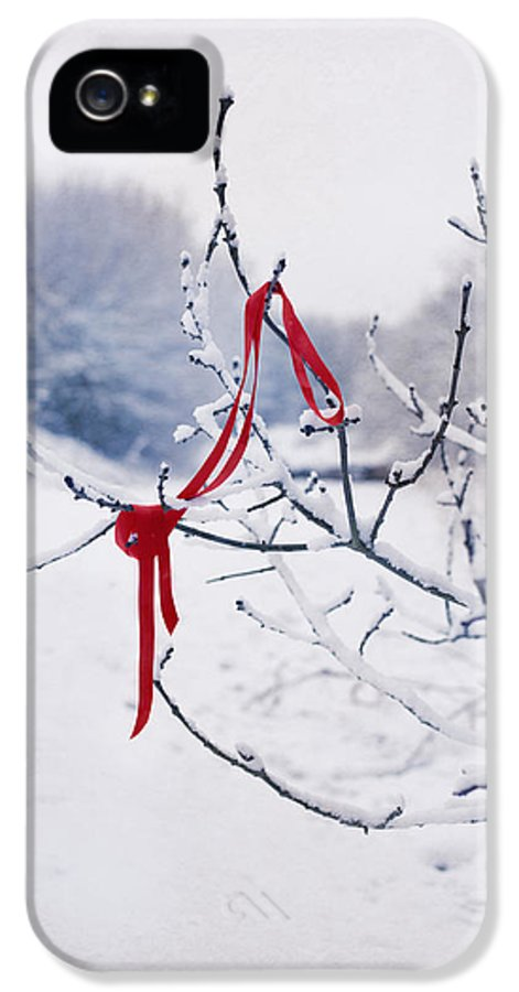 Red IPhone 5 Case featuring the photograph Ribbon In Tree by Amanda Elwell