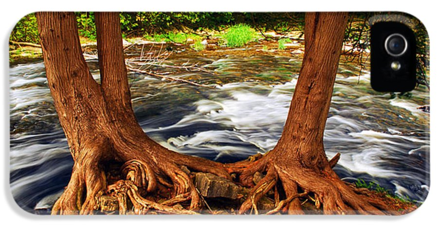 Water IPhone 5 Case featuring the photograph River by Elena Elisseeva