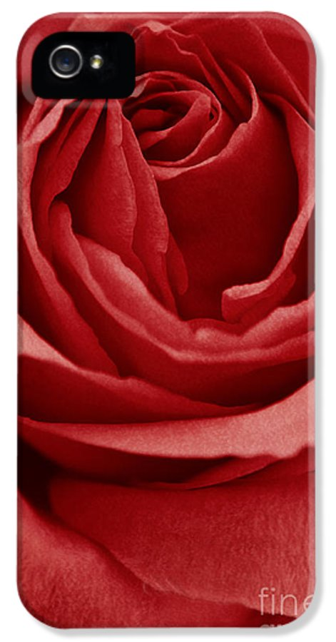 Rose IPhone 5 Case featuring the photograph Romance IIII by Angela Doelling AD DESIGN Photo and PhotoArt