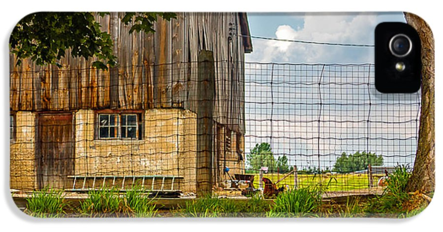 Barn IPhone 5 Case featuring the photograph Rooster Turf by Steve Harrington