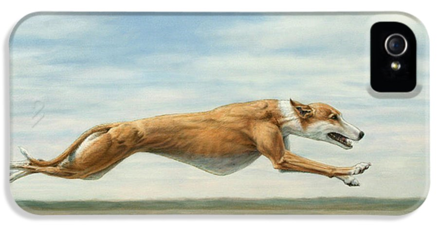 Greyhound IPhone 5 Case featuring the painting Running Free by James W Johnson