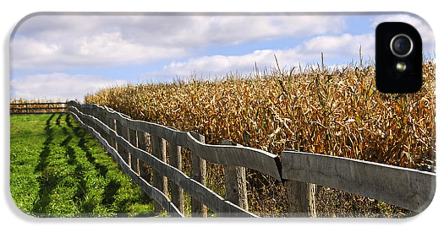 Country IPhone 5 Case featuring the photograph Rural Landscape With Fence by Elena Elisseeva