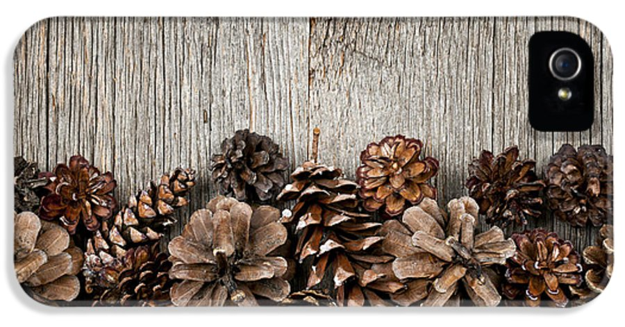 Wood IPhone 5 Case featuring the photograph Rustic Wood With Pine Cones by Elena Elisseeva