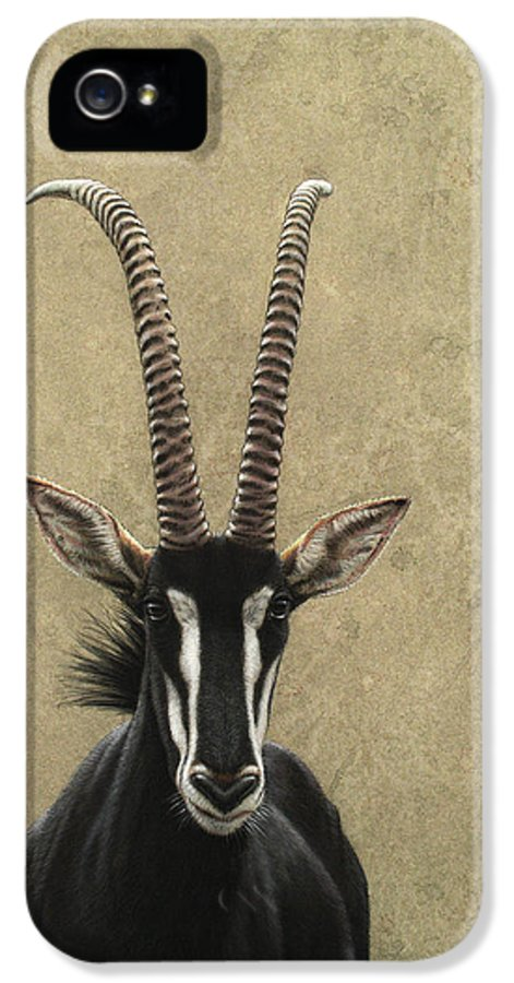 Sable IPhone 5 / 5s Case featuring the painting Sable by James W Johnson