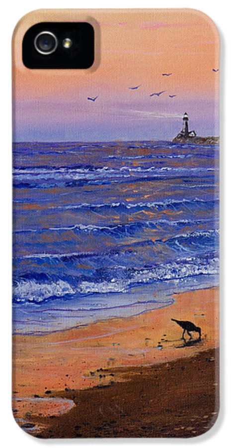 Ocean IPhone 5 Case featuring the painting Sandpiper At Sunset by Chris Steele