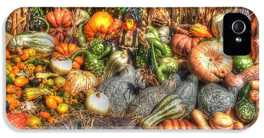 Corn Stalks IPhone 5 Case featuring the photograph Scenes Of The Season by Joann Vitali