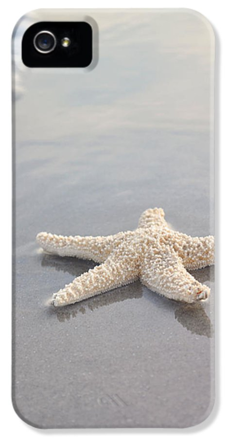 Beach IPhone 5 Case featuring the photograph Sea Star by Samantha Leonetti