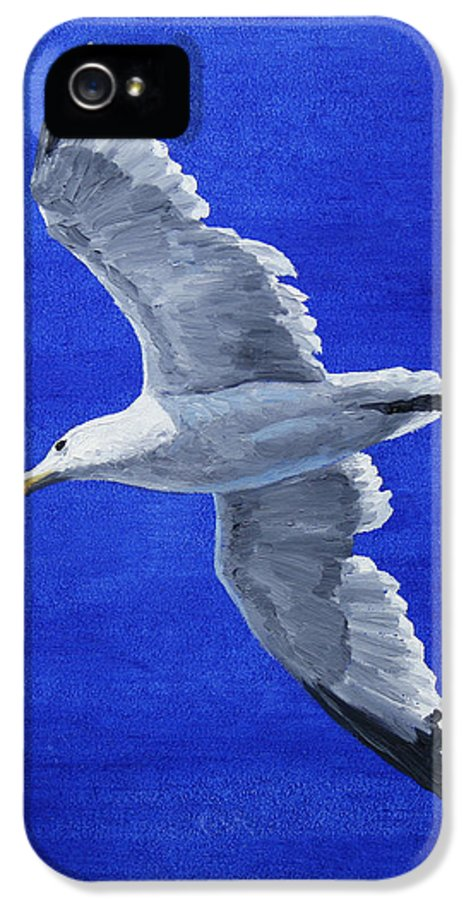 Bird IPhone 5 Case featuring the painting Seagull In Flight by Crista Forest