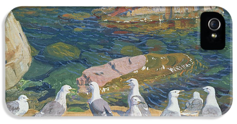 Landscape IPhone 5 Case featuring the painting Seagulls by Arkadij Aleksandrovic Rylov