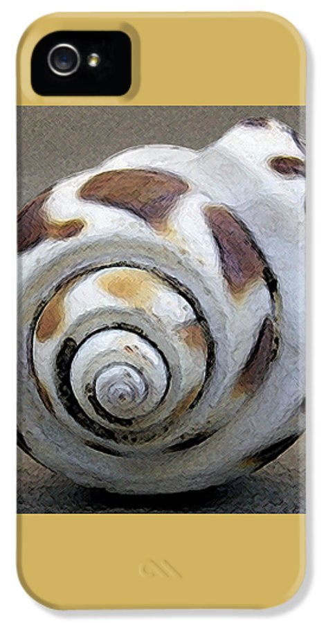 Seashell IPhone 5 Case featuring the photograph Seashells Spectacular No 2 by Ben and Raisa Gertsberg