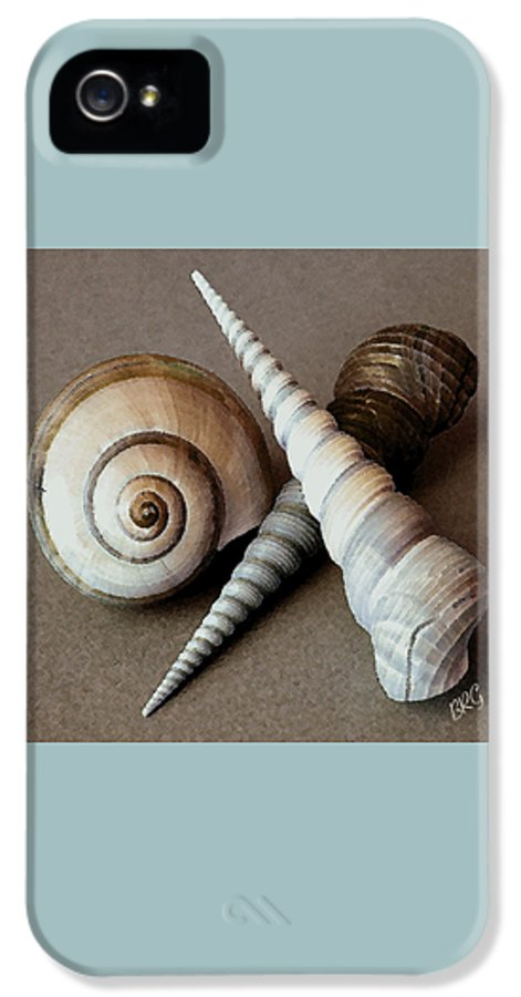 Seashell IPhone 5 Case featuring the photograph Seashells Spectacular No 24 by Ben and Raisa Gertsberg