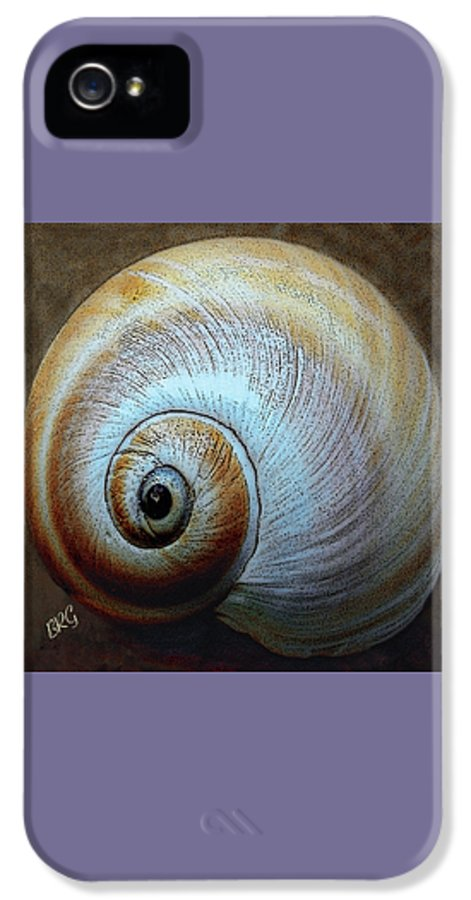 Seashell IPhone 5 Case featuring the photograph Seashells Spectacular No 36 by Ben and Raisa Gertsberg