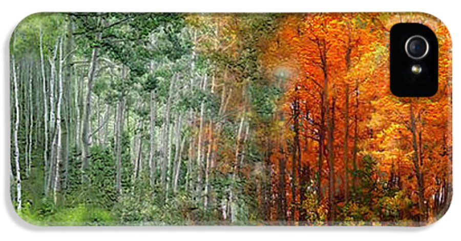 Aspen IPhone 5 Case featuring the mixed media Seasons Of The Aspen by Carol Cavalaris