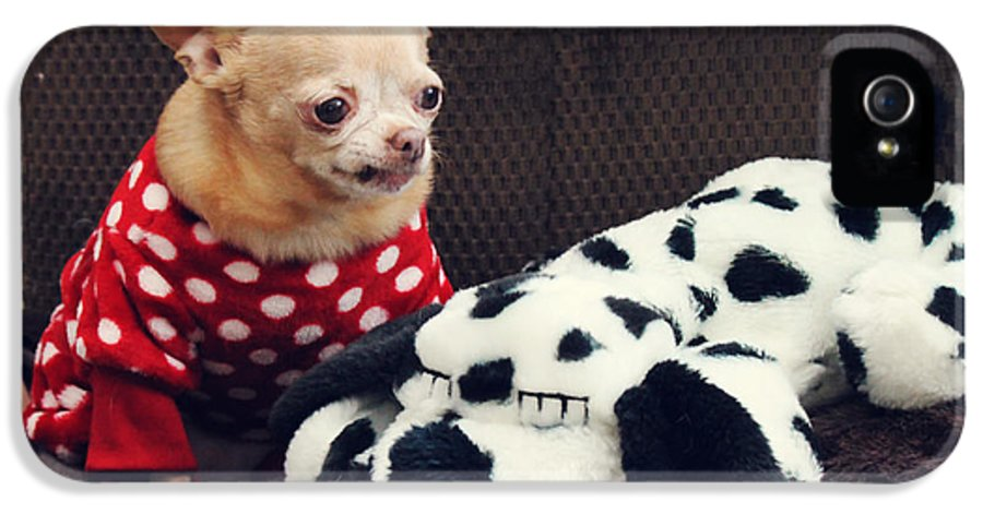 Dogs IPhone 5 Case featuring the photograph Seeing Spots by Laurie Search