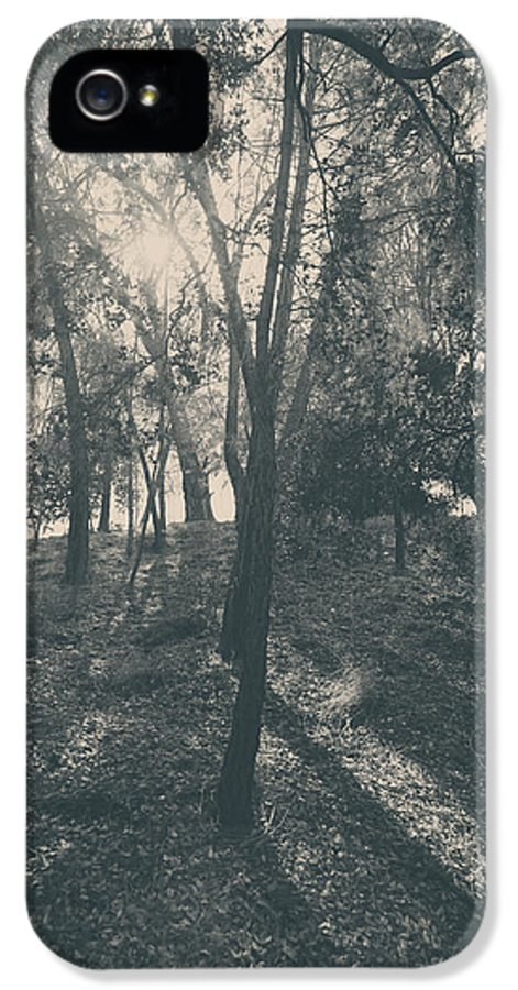 Lake Del Valle IPhone 5 Case featuring the photograph Sending Light And Warmth To You by Laurie Search