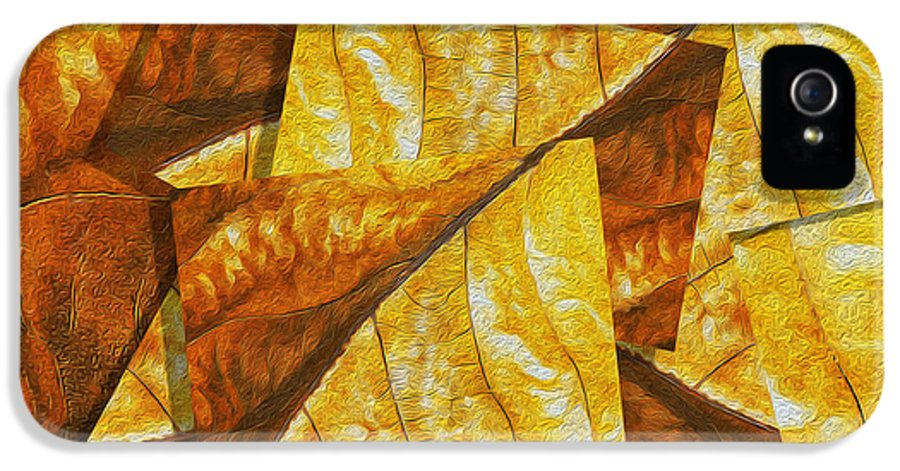 Digital IPhone 5 Case featuring the painting Shades Of Autumn by Jack Zulli