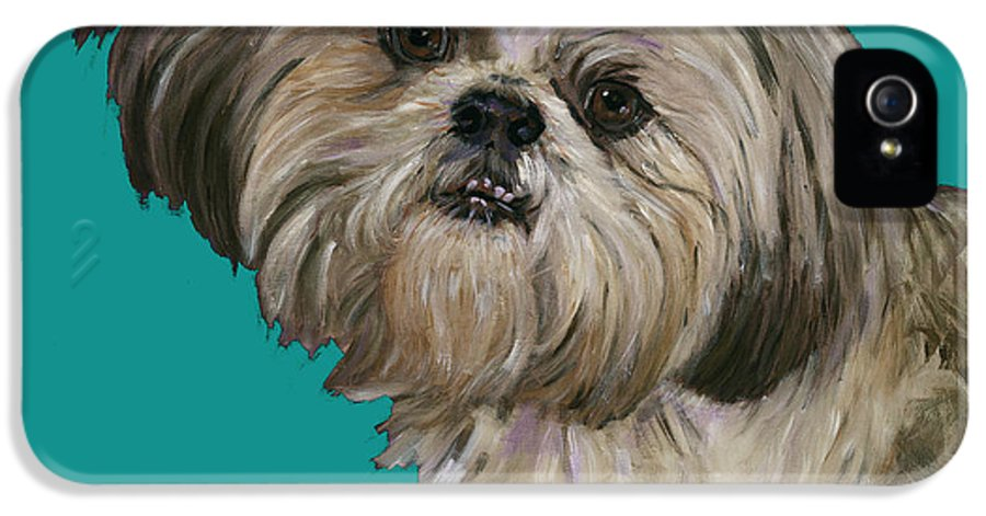 Shih Tzu IPhone 5 Case featuring the painting Shih Tzu On Turquoise by Dale Moses