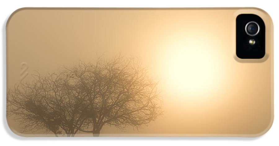 Sunrise IPhone 5 Case featuring the photograph Shining Through by Mike Dawson