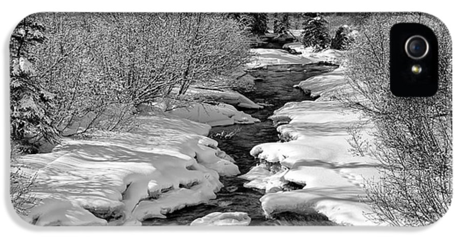 Alaska IPhone 5 Case featuring the photograph Ship Creek by Ed Boudreau