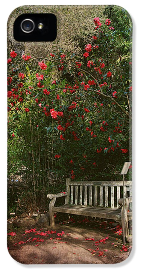 Uc Berkeley Botanical Garden IPhone 5 Case featuring the photograph Sit With Me Here by Laurie Search