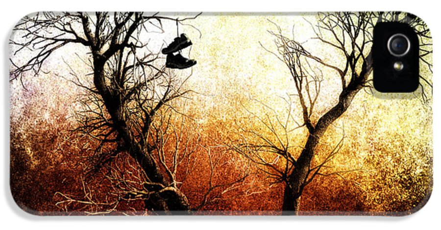Tree IPhone 5 Case featuring the photograph Sneakers In The Tree by Bob Orsillo