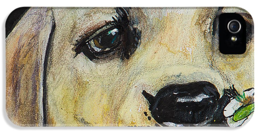 Labrador Retriever IPhone 5 Case featuring the painting Sniff The Flowers by Roger Wedegis