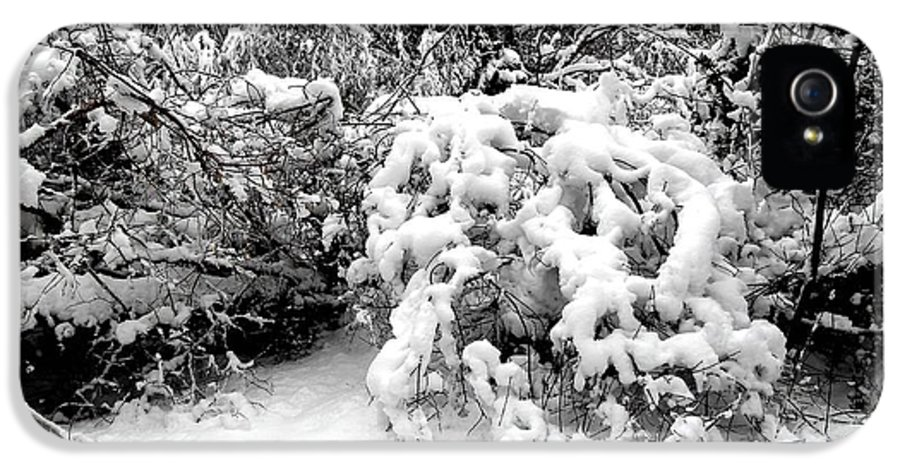 Snow Scene IPhone 5 Case featuring the photograph Snow Scene 1 by Patrick J Murphy