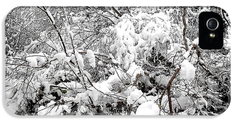 Snow Scene IPhone 5 Case featuring the photograph Snow Scene 4 by Patrick J Murphy