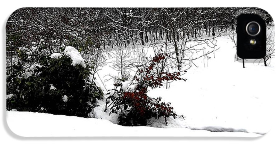 Snow Scene IPhone 5 Case featuring the photograph Snow Scene 6 by Patrick J Murphy